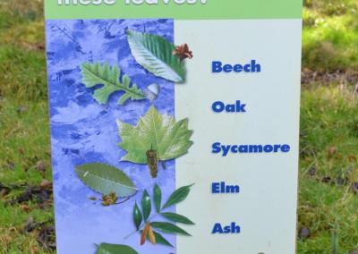 leaf-identification-post-sign